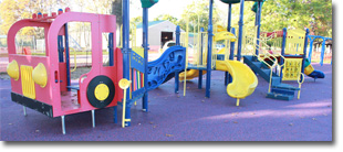 Tri-Township Park Playground in Troy IL is Now Open!