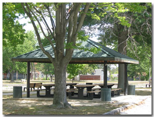 Pavilion #5 at Tri Township Park in Troy, Illinois Available for Rental & Located Close to the Petting Zooo in Illinois