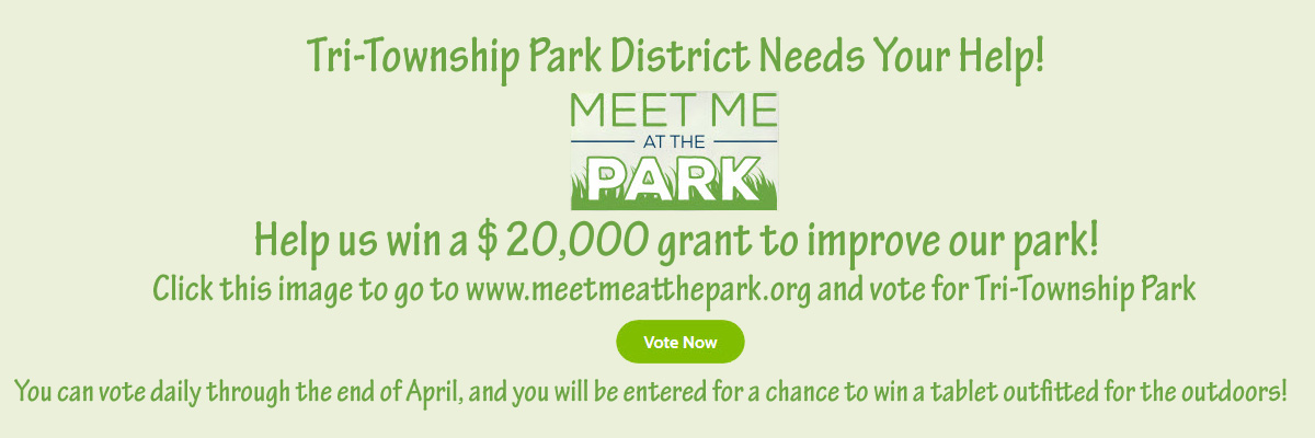 Meet Me at the Park Grant